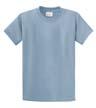 DTGB-C-PC61 - 100% Cotton T-Shirt